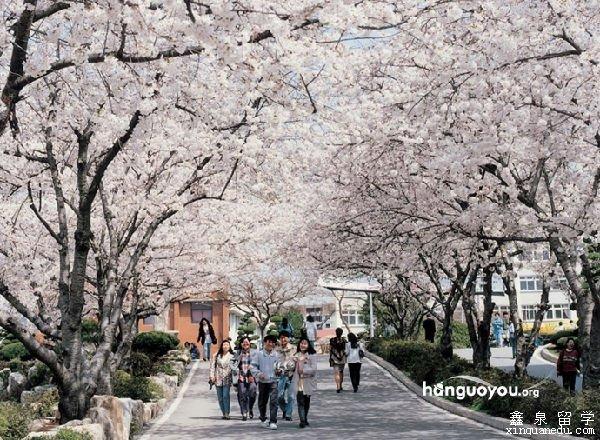韩国最美十大大学校园,来一场与韩国大学的美丽邂逅图片